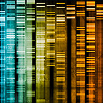 DNA-Medical-Abstract-thumbnail